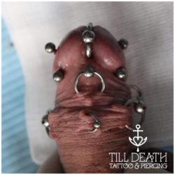 prince albert piercing, frenum, dydoe, Microdermal, piersing, piercing bydgoszcz, piercing, piercing sutkow, piercing włocławek, piercing torun, piercing sutka, piercing wloclawek, percing, przekuwanie ciala, przekłuwanie języka, studio piercing bydgoszcz, piercing inowrocław, piercing ucho, piercing toruń, studio piercingu, piercing grudziądz, rozpychanie uszu, piercing ucha, piercing intymny, studio piercingu bydgoszcz, pircing bydgoszcz, kolczyk, kolczykowanie, kolczyki toruń, studio kolczyków, persing, piercing, salon piercingu, profesjonalny piercing, septum, daith, industrial, przekłucie języka, przekłuwanie ciała,
