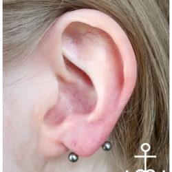 trans lobe piercing, transverse lobe, Microdermal, piersing, piercing bydgoszcz, piercing, piercing sutkow, piercing włocławek, piercing torun, piercing sutka, piercing wloclawek, percing, przekuwanie ciala, przekłuwanie języka, studio piercing bydgoszcz, piercing inowrocław, piercing ucho, piercing toruń, studio piercingu, piercing grudziądz, rozpychanie uszu, piercing ucha, piercing intymny, studio piercingu bydgoszcz, pircing bydgoszcz, kolczyk, kolczykowanie, kolczyki toruń, studio kolczyków, persing, piercing, salon piercingu, profesjonalny piercing, septum, daith, industrial, przekłucie języka, przekłuwanie ciała,